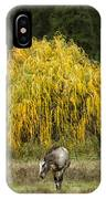 A Horse And A Willow Tree IPhone Case