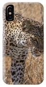 A Leopard, Panthera Pardus IPhone Case