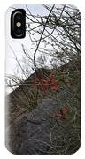 A Little Bit Of Red IPhone Case