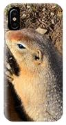 A Little Resident Of Denali IPhone Case