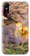 A Mother's Lovely Touch IPhone Case