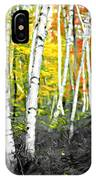 A Painting Autumn Birch Grove IPhone Case