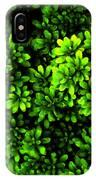 A Painting Azalea On Boxwoods IPhone Case