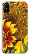 A Pair Of Sunflowers No.1 IPhone Case