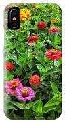 A Pair Of Yellow Zinnias 04 IPhone Case