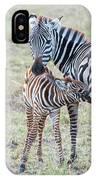 A Plains Zebra, Equus Quagga, Nursing IPhone Case