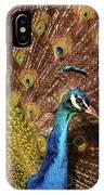 A Preening Peacock  IPhone Case