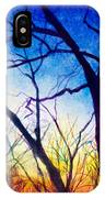 A Primary Sunset IPhone Case