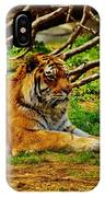 A Real Detroit Tiger IPhone Case