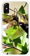 A Sphinx's Pollination IPhone Case