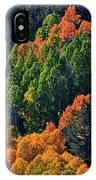 A Splash Of Color IPhone Case