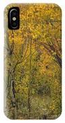 A Teton Autumn IPhone Case