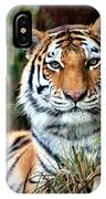 A Tigers Glance IPhone Case