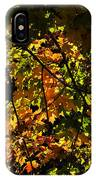 A Touch Of Fall IPhone Case