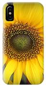 A Touch Of Sunshine - Sunflower IPhone Case