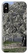 A Tree In Arlington IPhone Case