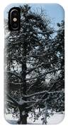 A Tree In Winter IPhone Case