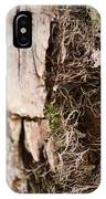 A Treetrunk Abstract IPhone Case