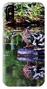 A Trip With The Car Si - Two Mallard On A Trip On A Tyre  IPhone Case