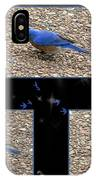A Typical Eastern Bluebird's Lunch - Featured In Comfortable Art Group IPhone Case