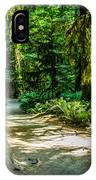 Pathway Cathedral Grove IPhone Case