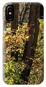 A Walk Through The Woods - 1 IPhone Case