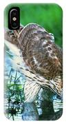 A Wild Juvenile Cooper's Hawk Drinks From A Pond IPhone Case