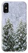 A Winter Scene IPhone Case