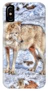 A Wolf In Winter IPhone X Case