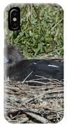 Abdims Stork IPhone Case