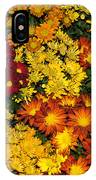 Abundance Of Yellows Reds And Oranges IPhone Case