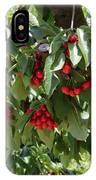 Abundant Cherries IPhone Case