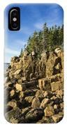 Acadia Seascape IPhone Case