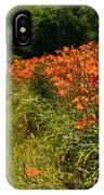Adamsville Lilies 1 IPhone Case
