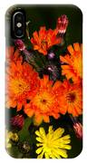 Adirondack Flowers IPhone Case