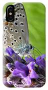 Adonis Blue Butterfly Of Monteriggioni IPhone Case