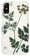 Aethusa Cynapium From Phytographie IPhone Case