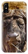 African Buffalo V3 IPhone Case