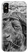 African Buffalo V4 IPhone Case