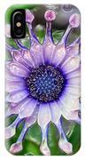 African Daisy For Van Gogh IPhone Case