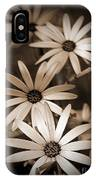 African Daisy Named African Sun IPhone Case