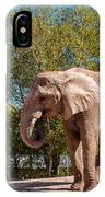 African Elephant 2 IPhone Case