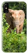 African Elephant Eating In The Shrubs IPhone Case