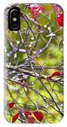 After The Autumn Rain 2 - Digital Paint IPhone Case