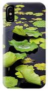 After The Rain- Gungarre Billabong V3 IPhone Case