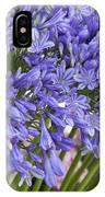 Agapanthus Flower Stalk Display At Florist IPhone Case