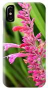Agastache Desert Sunrise IPhone Case