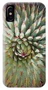 Agave Spikes IPhone Case