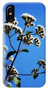 Ageratina Adenophora  IPhone Case
