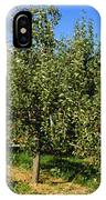 Agriculture - Bosc Pear Orchard IPhone Case